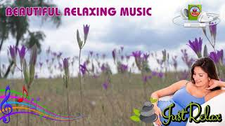 Best for Pregnant Brain Development Lullaby, Sleep Music for Babies, Mozart Effect ♫ by Relax MTV