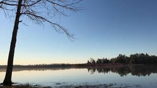 Morning on the Lake 1.5 hours Relaxing Video