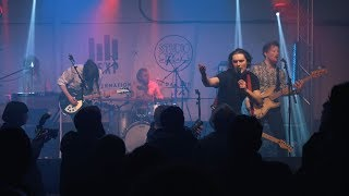 Avalanche Party - Full Performance (Live on KEXP)