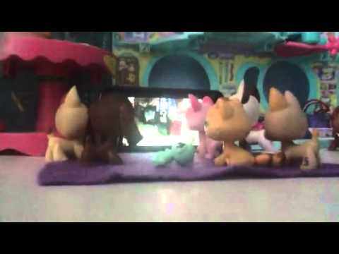 Lps: 2015 ( for puppylover863)