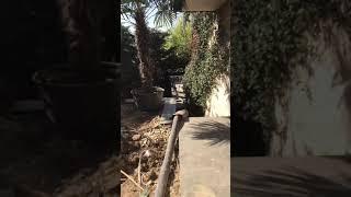 Sabit beton pompasi 05425431121