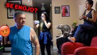 PRANKING MY DAD *SE METIO UNA RATA*