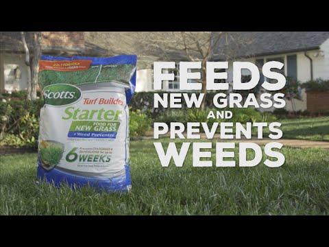 Scotts® Turf Builder® Starter® Food For New Grass Plus Weed Preventer