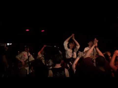 指先ノハク-フェスタブルー【LIVE  MUSIC VIDEO】