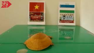 Các nhà tiên tri dự đoán trận chung kết U23 việt nam - U23 Uzbekistan