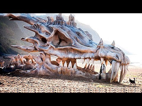 Ученые Нашли Самое Страшное Существо за Всю Историю Земли