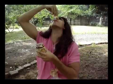 Baixar HUMOR: Damares - Sabor de Mel