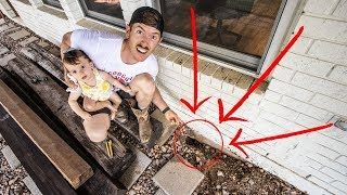 We found out what's living under our HOUSE (NOT what we expected!)