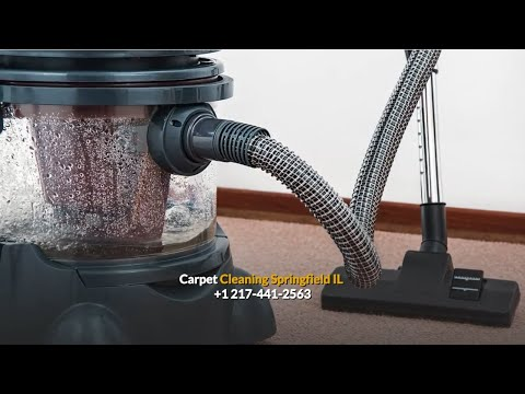 Best carpet cleaning companies springfield il