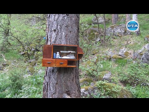 BTA: Туристи поставиха първата горска аптечка в пернишкия дял на Витоша