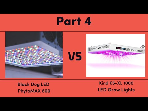 Black Dog LED PhytoMAX 800 vs. Kind K5-XL1000 LED Grow Lights - Part 4