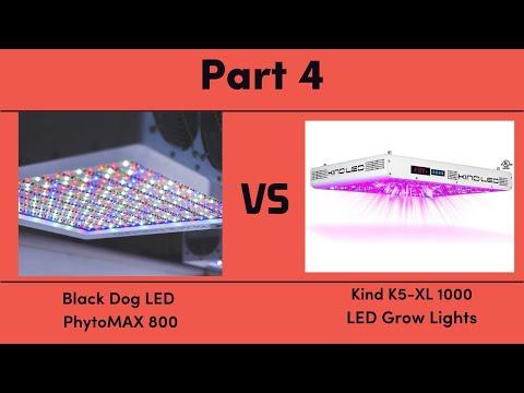 Black Dog LED PhytoMAX 800 vs. Kind K5-XL1000 LED Grow Lights - Part 4