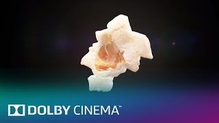 Movies Matter | Dolby Cinema | Dolby