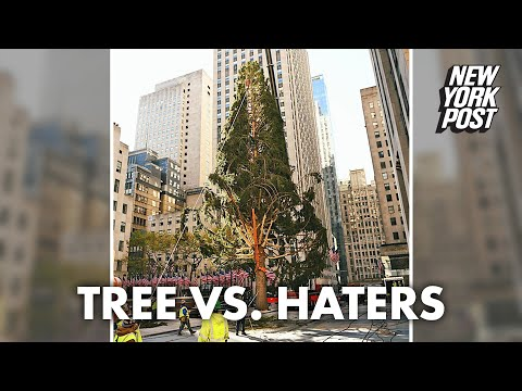 Rockefeller Center Christmas Tree slams haters on Twitter | New York Post