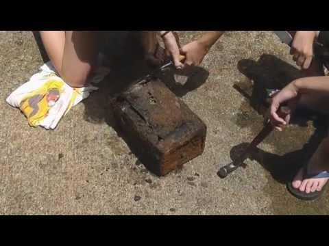 Baixar Buried Treasure Found at South River!