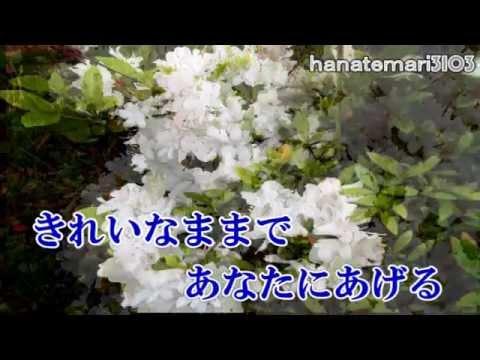 木村好夫  忘れてほしい  花のステージ387  渥美二郎