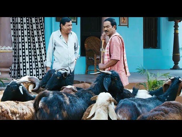 సార్..నా మేకలకి LIC పాలసీలు చేయాలి..పడి పడి నవ్వుతారు | AK Rao PK Rao Movie Comedy Scenes