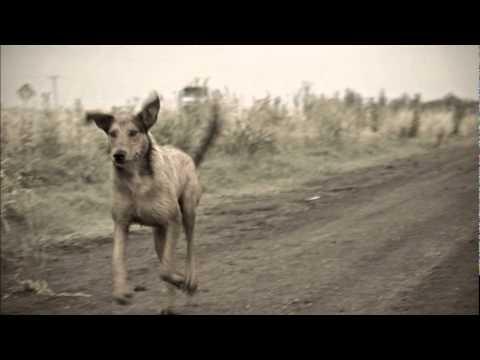 Argentino Luna - El malevo