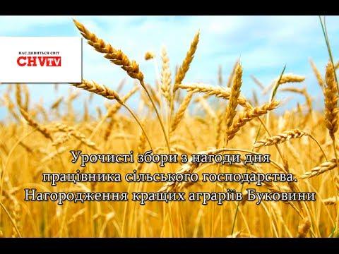 Урочисті збори з нагоди дня працівника сільського господарства
