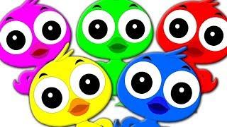 Colorful Ducks Song   Kids Videos Compilation   Kindergarten Nursery Rhymes For Children By Kids Tv