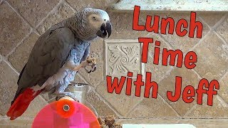 Einstein and Jeff Make Lunch Together