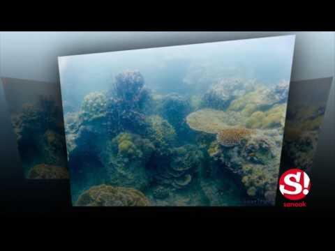 ไปเที่ยวทะเลเมียนมาร์ กันไหม สี่เกาะหัวใจมรกต ทริปที่จะไม่มีวันลืม
