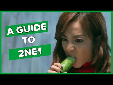 An (un)helpful guide to 2NE1