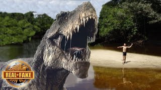 LIVING DINOSAUR DISCOVERED IN AMAZON JUNGLE - real or fake?