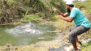 😨 Incredible Fish Catching  🐋Big Rohu Fishing Amazing Fishing🎣  Rohu Fishing  Fishing Big Rohu Fish