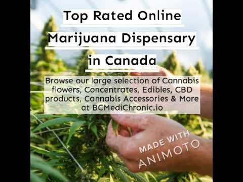 BC Medi Chronic | Top Rated Online Marijuana Dispensary in Canada