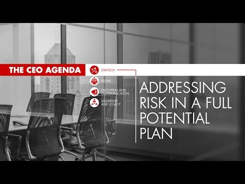 The CEO Agenda: Addressing Risk in a Full Potential Plan