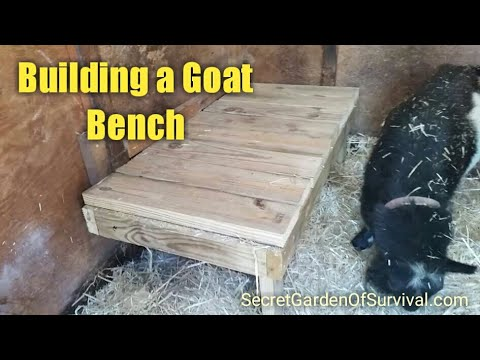 Building a Goat Bench