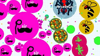 Agario Solo On Mobile The Last One Standing (Agar.io Funny Moments)