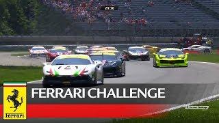 Ferrari Challenge Europe – Monza 2017, Coppa Shell Race 2