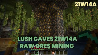 Raw Ores in Lush Caves 21w14a | Exploring Lush Cave | Minecraft 1.17