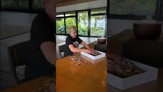 Ellen DeGeneres During Coronavirus Social Distancing
