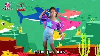 Baby Shark Song Dance Viral