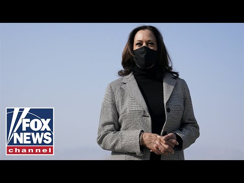 Kamala Harris' border comments should've 'disqualified' her from the job: Concha