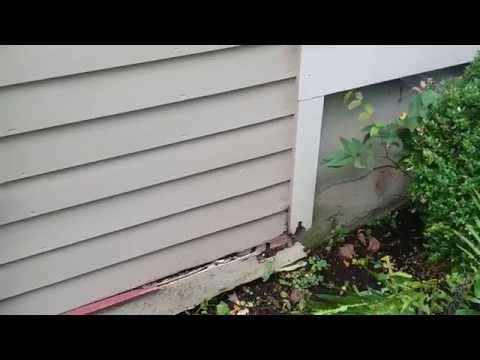 Dangers of Clogged Gutters