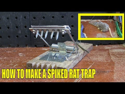 How To Make A Spiked Rat Trap