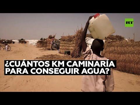 Niños en Somalia caminan hasta 50 km para obtener agua