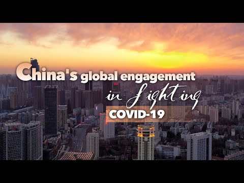 CGTN: What drives China's success in 2020