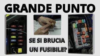 CONTROLLO E CAMBIO FUSIBILI SU FIAT GRANDE PUNTO (PUNTO EVO - PUNTO 2012)