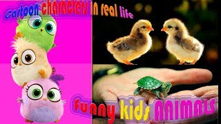 CARTOON CHARACTERS Compilation Funny and Cute baby animals What are they in real life? NameOfAnimals