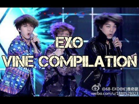 Funny Exo Vine Compilation
