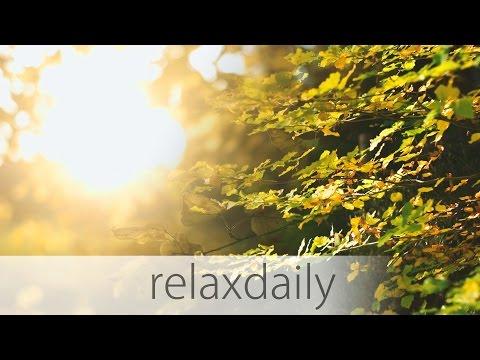 Inspiring Music - calm, positive, nature - N°011 (4K)