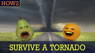 HOW2: How to Survive a Tornado!