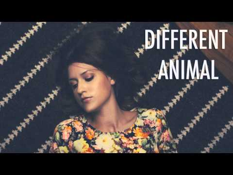 Natalie Taylor - Different Animal (featured in MTV's Finding Carter)