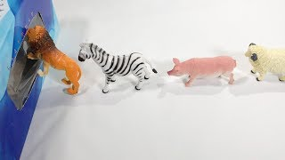 Stop Motion Wild Animals Running into Box Toys for Kids Baby Children Toddlers!