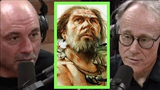 Joe Rogan | The Strange History Of The Denisovans W/Graham Hancock